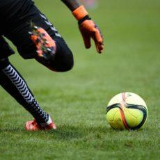 Saint-Etienne : un gardien s'engage en National (off)