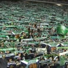 Communiqué : Les Green Angels n'iront pas au stade